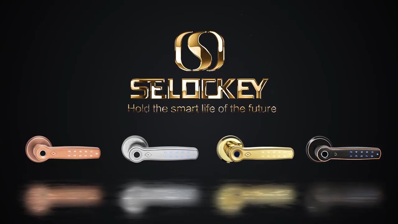 S1580 İç kapı kolu ve kilit şifre TTLOCK / Tuya APP WIFI parmak izi akıllı kapı kolu kilidi destek Alexa