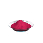 Red Dyes High Washing Fastness Deep Red WF-PUD-B Disperse Dyes For PES PES/EL Fabrics