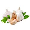 /product-detail/hot-sale-fresh-white-red-garlic-low-price-garlic-for-sale-62008964583.html