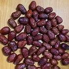Wholesale Good Taste Red Dates Jujube Supplier