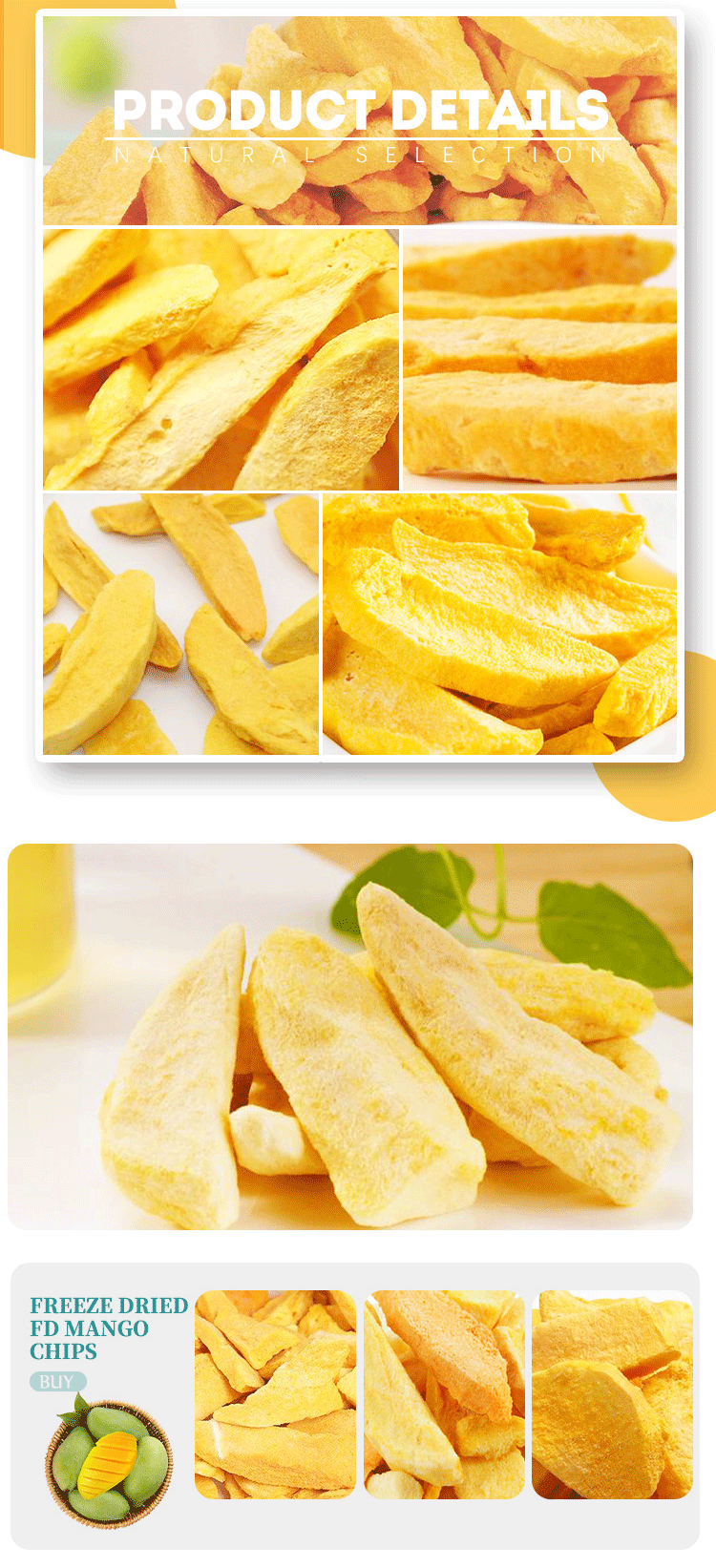 Freeze Dried FD mango chips