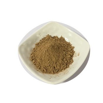 High quality green coffee bean extract 10:1 20:1 TLC