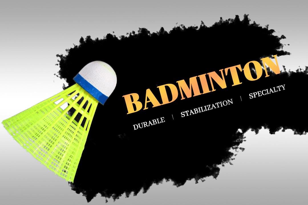 Regail  cheap plastic badminton shuttlecoke 3 pc in tube  Provide customized nylon badminton balls