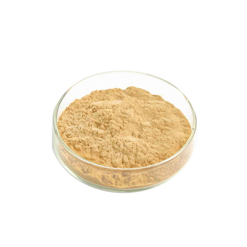 Manufacturer supply bulk 200:1 eurycomanone tongkat ali extract <strong>powder</strong>
