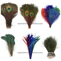 Prime Quality Health Certificates Bleached Dyed 10-50 Inch Cheap Indian Natural White Peacock Feathers