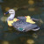 Floating Duck Waterfowl Ornament Pond Decor
