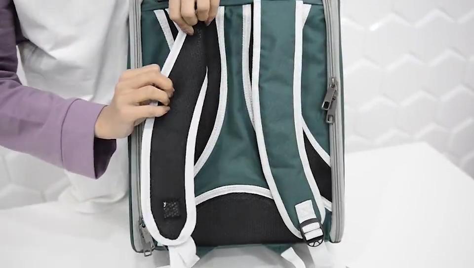 HQP-WC053 HongQiang Convenient transparent pet cat bag PVC folding pet backpack Cat bag