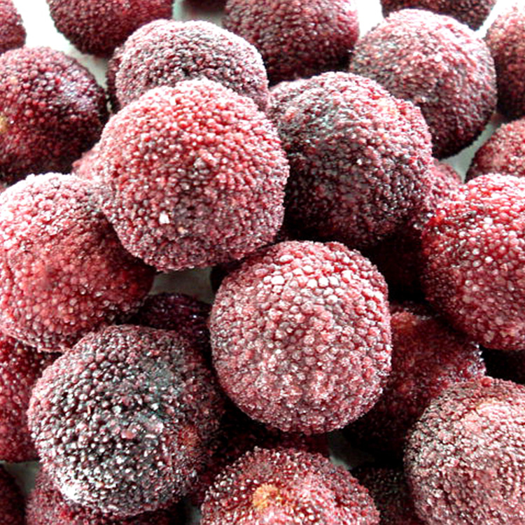 Frozen Red Bayberry Fruit