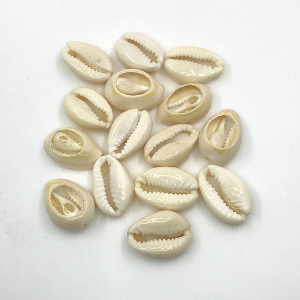 Sea Shell Beads White Seashells Cowry Shells Natural Seashell Beach Decor