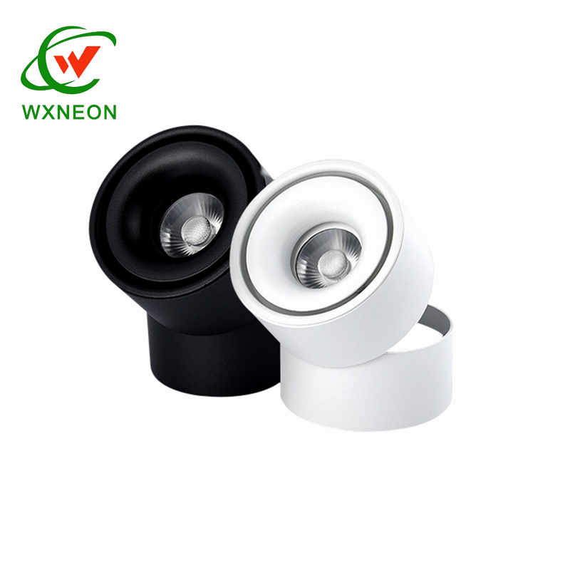 Dimmable 10W Modern Indoor COB Decorative Spot Light Led Ceiling Downlight