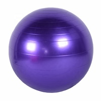 Anti-burst Exercise Balance Stability Fitness Yoga Massage Ball With Air Pump