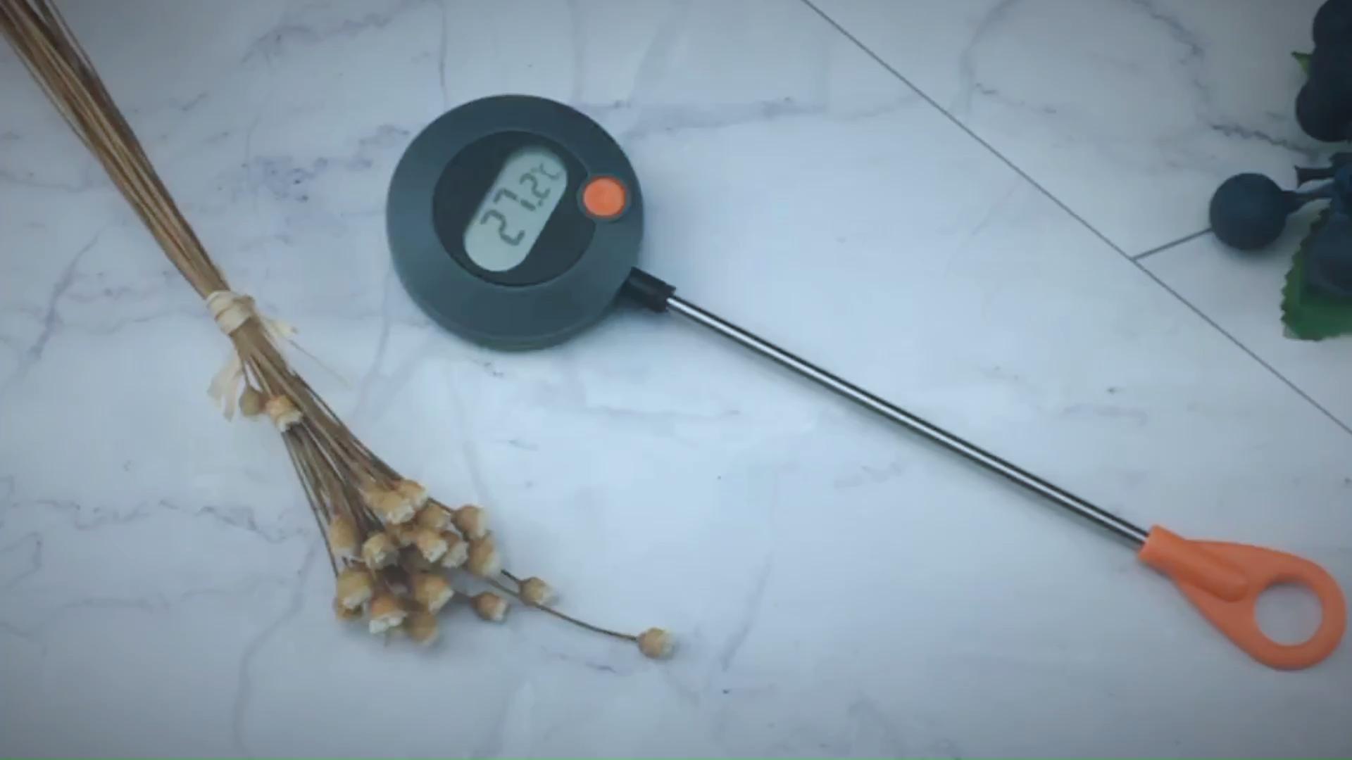 Fornitore cinese di plastica sensori di temperatura digital termometro di carne