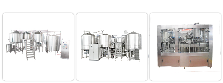 Nano Brewery Equipment 50L Microbrewery Equipment For Brew Pub