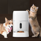 2019 Newest automatic food blows plastic smart video style pet feeder for dog cat