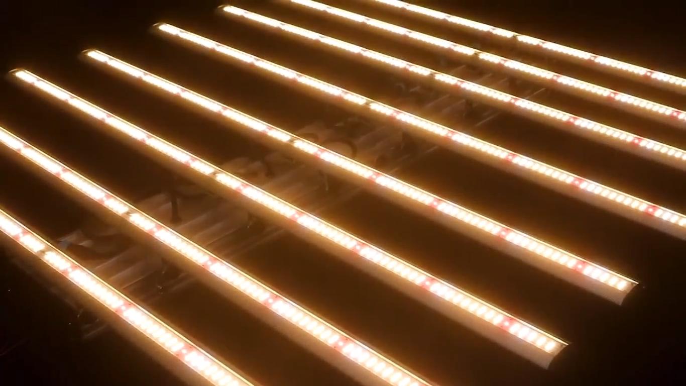 Comercial a nivel mundial patentado de efecto invernadero regulable ajustable 1000w 800W 640W LED crecen luces