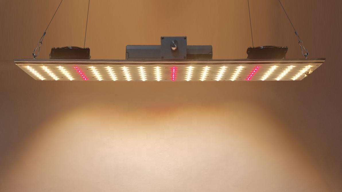 Liweidaフルスペクトル 3000k/4000k + 660nm屋内成長量子プレート従来の 1000 ワットled成長ライト