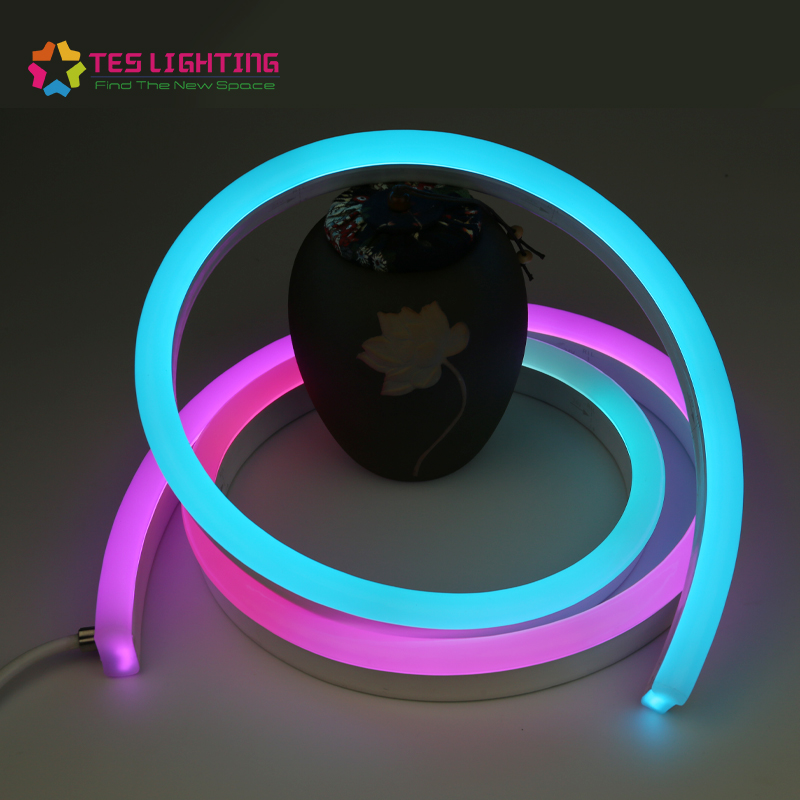 Programmable Outdoor and Indoor Changing RGB Led Flex Neon Price List Strip