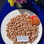 High Quality Good Blanched Peanuts Kernels