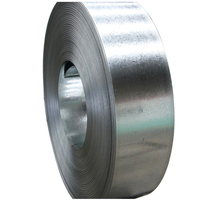 China Manufacturer Galvanized Steel Metal Strip Coil Price