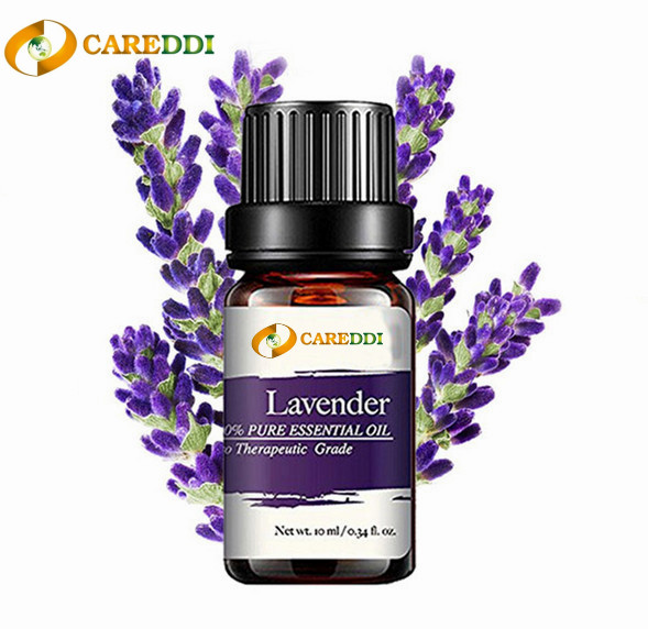 Factory Supply Lavender Essential Oil for Sleep Health 100% Pure Natural Undiluted Therapeutic Grade for Aromatherapy Diffuser