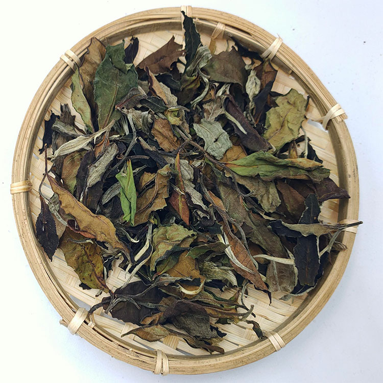 Chinese black tea yunnan big leaf species organic puer tea - 4uTea | 4uTea.com