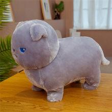 Новые Мягкие плюшевые игрушки Kawaii Fat Cats, мягкие игрушки Kawaii Animal Doll, мягкая мультяшная Подушка, подарок на день рождения для детей, декор для д...(Китай)