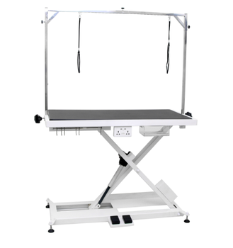 FT-801 Electric lifting dog grooming table