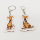 Transparent Acrylic Blank Keychain Custom Printed Acrylic Key ring for Zoo Park Advertising