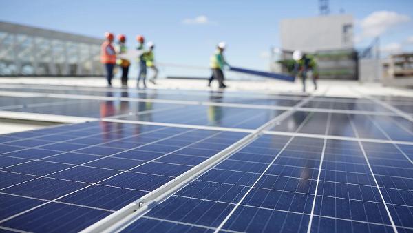yingli solar panel price