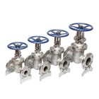 ANSI Stainless Steel Cf8 Rising Stem Gate Valve for Water and Acid