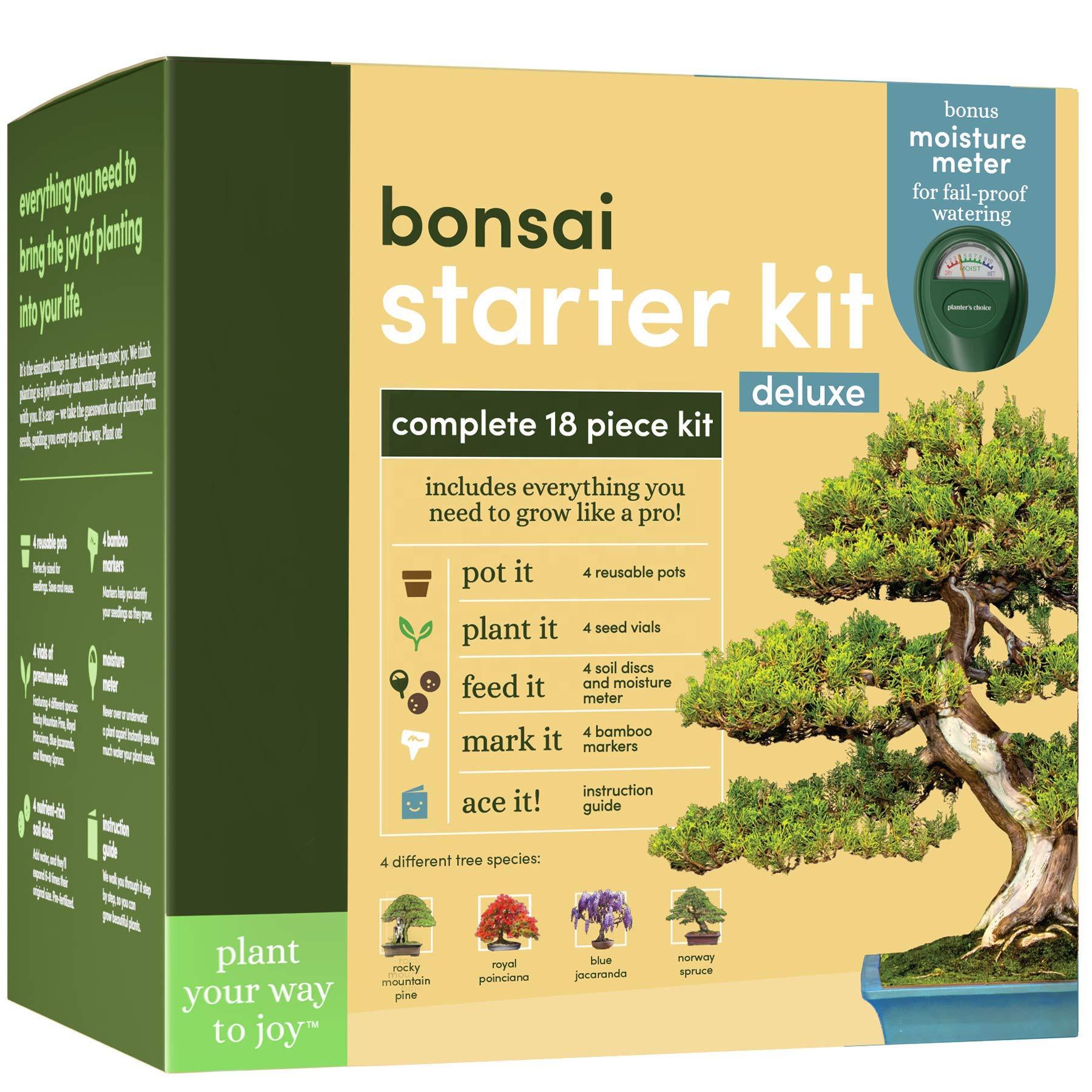 Wholesale Indoor Garden Bonsai Tree Seed Start Kit For Indoor Decoration Buy Bonsai Tree Bonsai Seed Start Kit Bonsai Tree Seed Start Kit For Indoor Decoration Product On Alibaba Com