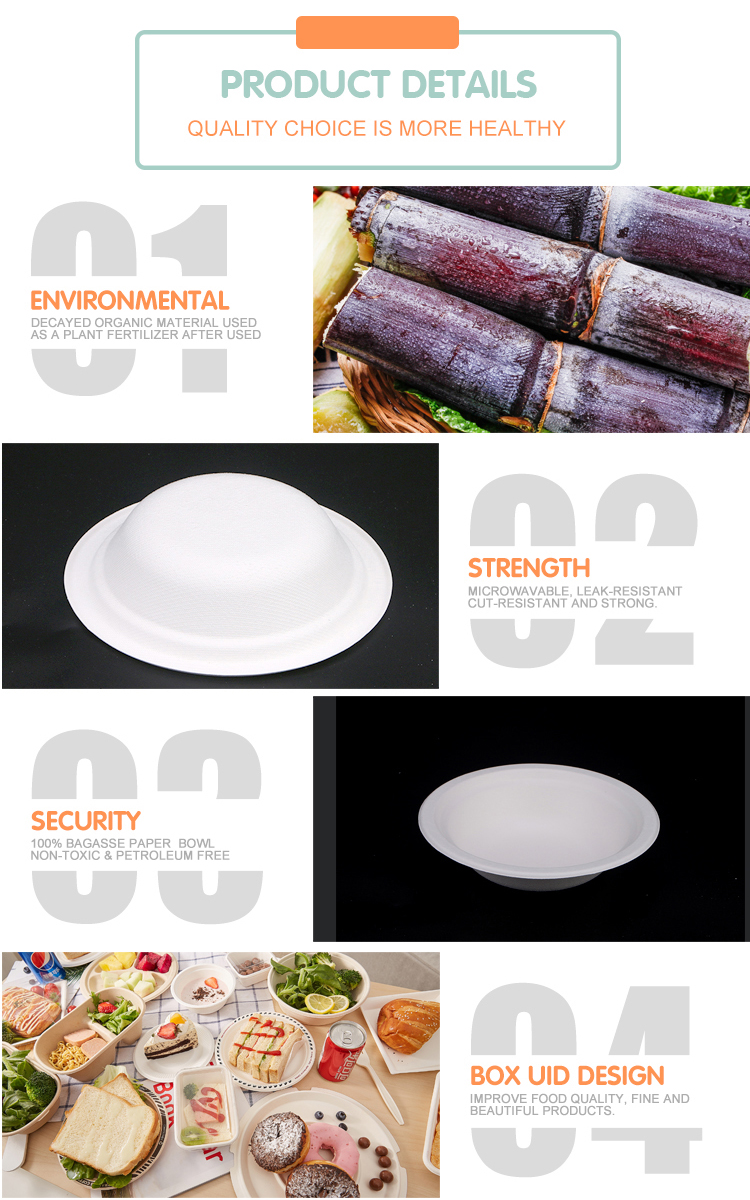Disposable Plastic Biodegradable salad bowl With Lid Food Packing Bowls