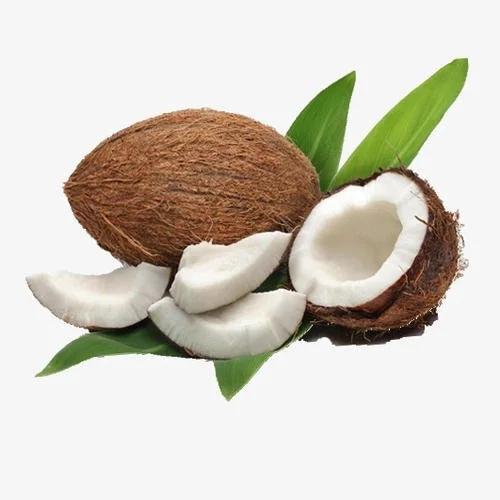 Фабричная поставка Кокосовой Стружки с низким содержанием жира и высоким содержанием жира