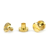 Professional Brass Slot Flat Beveled Head Chicago Screw