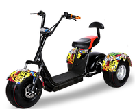 Three wheels big tire trike atv adult tricycle citycoco 3 wheel electric scooter 1000W 2000W