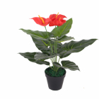 Artificial Mini Anthurium Table Plants For Sale