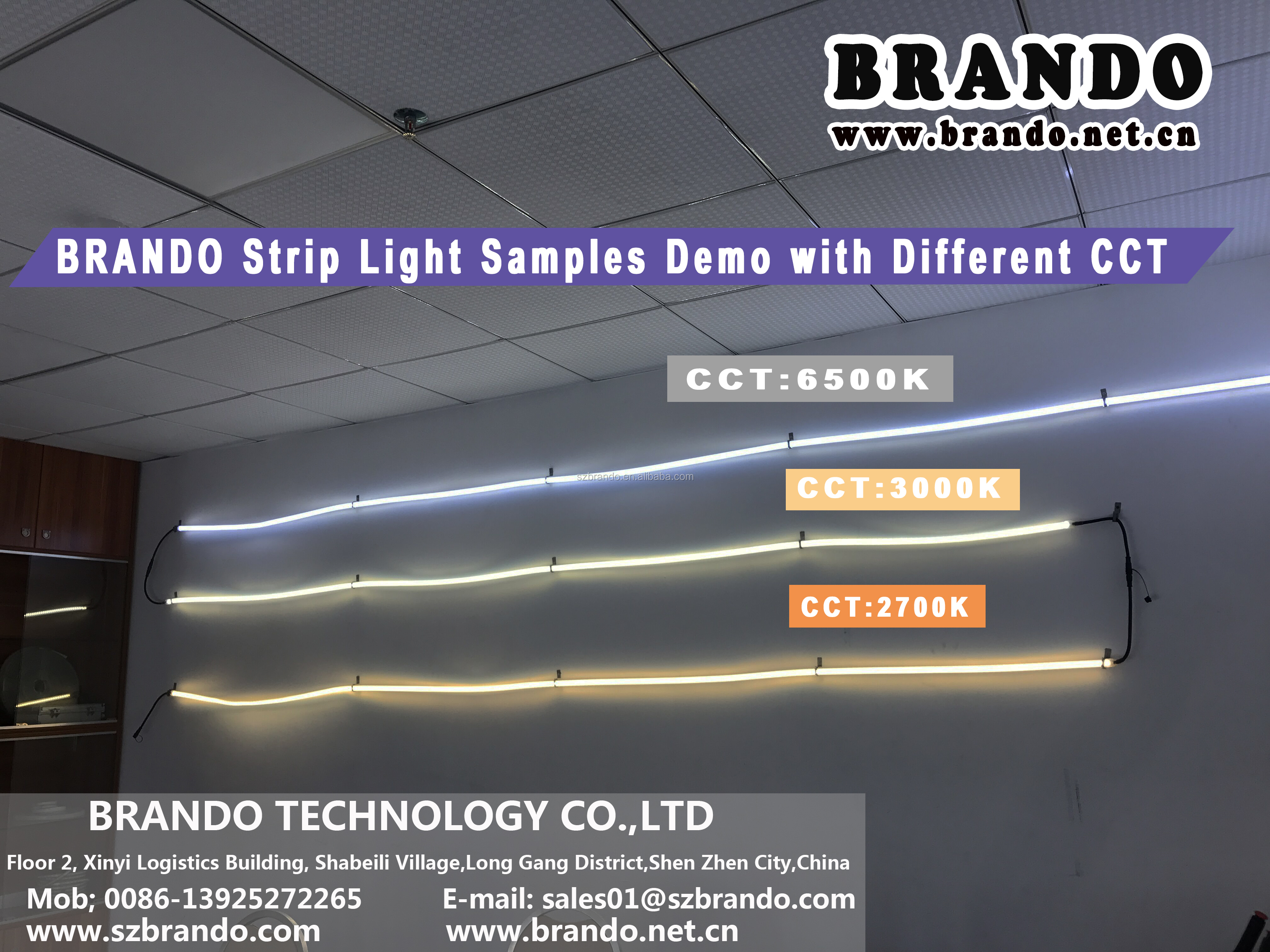 BRANDO strip light demo 2.jpg