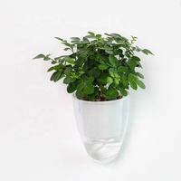 High quality ABS biodegradable material self watering wall mounted , transparent plastic hanging flower pot