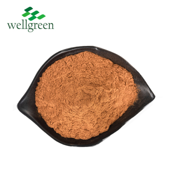 100% Natural 30% 70% 99% Suppliers Roottumeric kavalactones Root Kava Powder Kava Extract