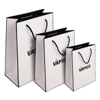 Luxury Custom Print Gift Paper Shopping Bag With PP Handle,Sac En Papier For Cosmetic Packaging