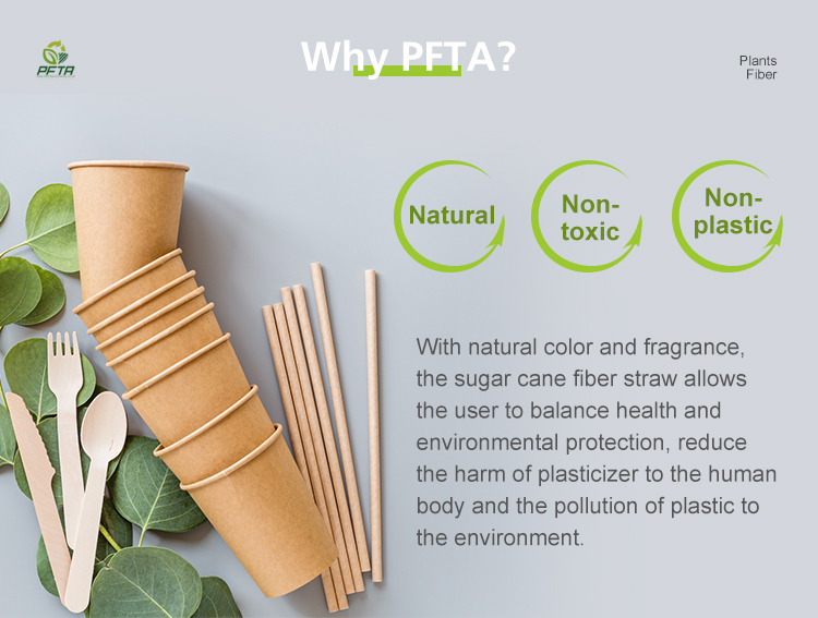 ecological products biodegradable straw sugarcane fiber straws