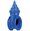 /product-detail/good-quality-6-inch-cast-iron-non-rising-stem-flange-resilient-seat-gate-valve-price-list-62538838079.html