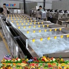 Juice Machines Waxberry Juice Processing Line/waxberry Juice Production Line/waxberry Processing Line And Machines