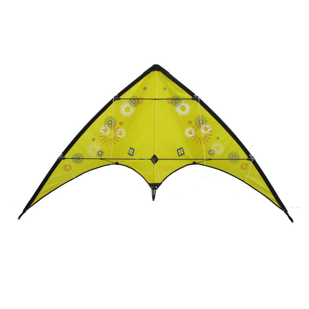 Dual line stunt kite for sale