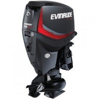 2010 Evinrude 250 E-TEC Outboard RightHand 30 Shaft Engine Motor 618Hour.