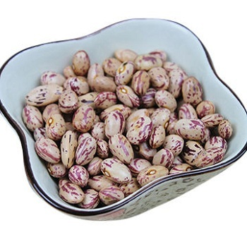 Quality Dried Pinto Beans, White Kidney Beans, for export