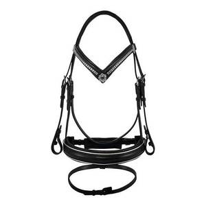 Horse Bridle with Clincher