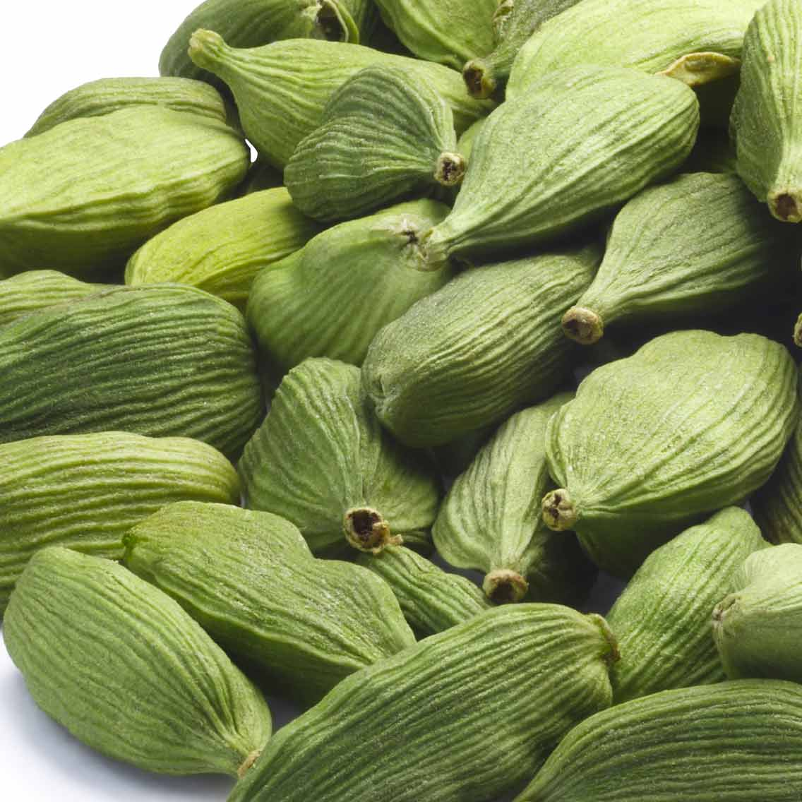Quality Green Cardamom Wholesale from Top Supplier
