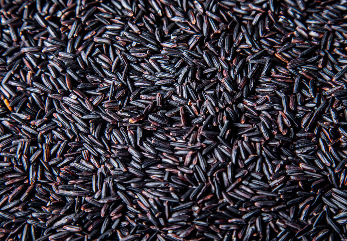 Best black rice long grain wholesale suppliers, premium high quality for health, cheap price