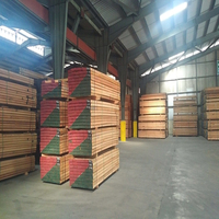 Low price construction Spruce wood / Cheapest Spruce and Red Meranti Sawn Timber logs